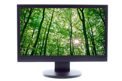 Forest on TV screen Stock Photo