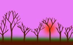 Forest Twilight 02 Imagen de archivo libre de regalías
