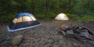 Forest with two tents Stock Image