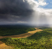 Forest under clouds, top view Stock Images