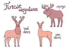 Forest ungulate animals set. Stock Photos