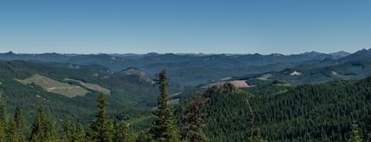 Forest Utilization. Panorama of clearcuts in Western Oregon Stock Photos