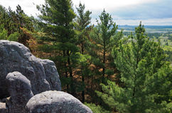Forest Valley Overlook at Castle Mound. Overlooking castle mound pine forest valley from atop rock formations in black river falls state forest in wisconsin royalty free stock photos