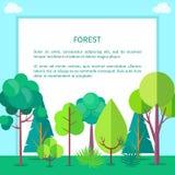 Forest Vector Web Banner avec des arbres et des buissons Illustration Stock