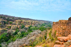 Forest view. Along the Ranthambhore fort wall, Rajashthan, India Royalty Free Stock Photography