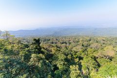 Forest from viewpoint in Phu Hin Rong Kla National Park Stock Photo