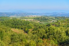 Forest and Vineyard in Chianti region. Tuscany. Italy. View forest and vineyard in Chianti region. Tuscany landscape. Italy royalty free stock photo