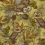 Forest vintage seamless background with owls Stock Image