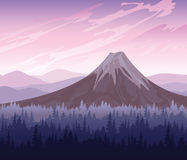 Forest and volcano Stock Photography