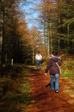 Forest Walk 3. Woman and young girl walking in the forest Stock Images