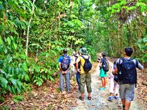 Forest walk in Pulau Ubin. Group of visitors studying tropical rainforests in Ubin Island, Singapore, as part of Wildlife Blitz organised by the Nature Society's stock image