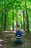 Forest walk Royalty Free Stock Image