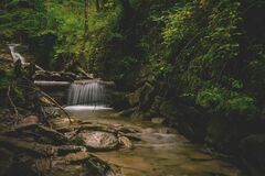 Forest and Water Falls Landscape Photo Stock Photos
