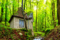 Forest Water House. Picturesque picture of a Water House in an enchanted green forest in Bavaria. Shot in Germany in spring in a rainy forest Royalty Free Stock Photos