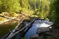 Forest wateralls in Karelia, reserve White Bridges Stock Photography