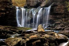 Forest Waterfall Stock Photo