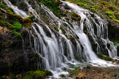 Forest waterfall. Wild stream between stones in green forest landscape Stock Image