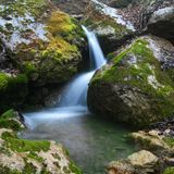 Forest waterfall Stock Photography