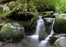 Forest waterfall. Forest waterfall and stones overgrown with moss Royalty Free Stock Photo