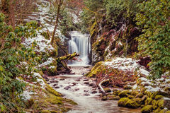 Forest waterfall in Baden-Baden. Royalty Free Stock Photos