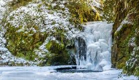 Forest waterfall in Baden-Baden in winter. Stock Images