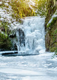 Forest waterfall in Baden-Baden in winter. Royalty Free Stock Images