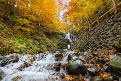 Forest waterfall in Carpathian mountains at autumn Royalty Free Stock Photography