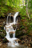 Forest waterfall cascading. Motion blurred waterfall in a green forest Stock Images
