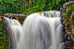 Forest waterfall long-exposured photo Royalty Free Stock Photography