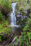 Forest waterfall in Monchique Algarve. Royalty Free Stock Photo