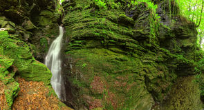 Forest waterfall mossy rocks Stock Photos