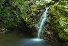 Forest waterfall Royalty Free Stock Photography
