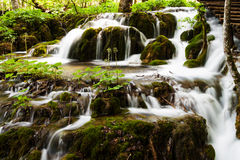 Forest waterfall in Plitvice Lakes National Park, Croatia Royalty Free Stock Photography