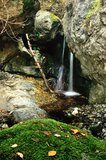 Forest waterfall and rocks Royalty Free Stock Image