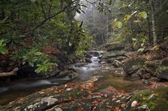 Forest Waterfall. A small waterfall along a creek in North Carolina in autumn on a rainy day stock photos