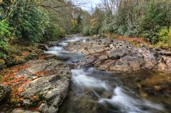 Forest Waterfall. A small waterfall along a creek in North Carolina in autumn on a rainy day royalty free stock photos