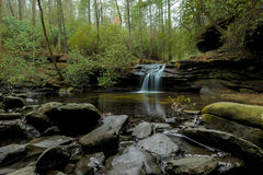 Forest and waterfall in South Carolina Stock Photo