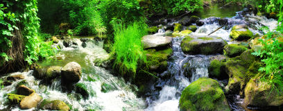 Forest waterfall with wet rocks. Panoramic landscape Stock Photo