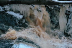 Forest waterfall in winter Stock Images