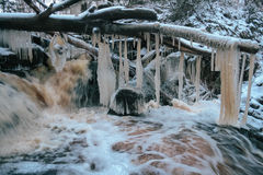 Forest waterfall in winter Stock Photography