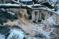 Forest waterfall in winter Royalty Free Stock Image