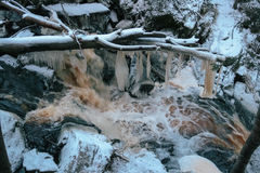Forest waterfall in winter Royalty Free Stock Photos