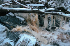 Forest waterfall in winter Stock Photos