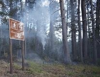 Forest Wildfire lizenzfreies stockbild