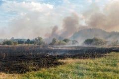 Forest Wildfire Brandend gebied van droge gras en bomen Zware rook tegen blauwe hemel Wilde brand toe te schrijven aan heet winde stock afbeelding