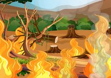 Forest Wildfire Disaster illustration libre de droits