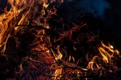 Forest wildfire at night whole area covered by flame and clouds of dark smoke. Distorted details due high temperature and. Evaporation gases during combustion royalty free stock photo