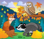 Forest wildlife theme image 2 Royalty Free Stock Photography