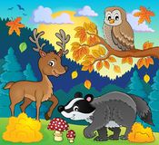 Forest wildlife theme image 3 Royalty Free Stock Image
