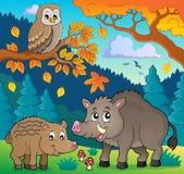 Forest wildlife theme image 5 Royalty Free Stock Image
